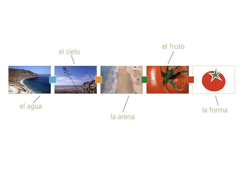 Marca Tomate La Cañada-Níjar. Referencias conceptuales.